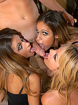 Kelly Madison and the Love Twins munch on each others pussies and get nailed by Ryan.